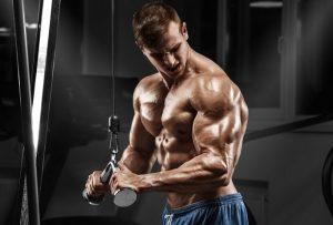génétique parfaite musculation